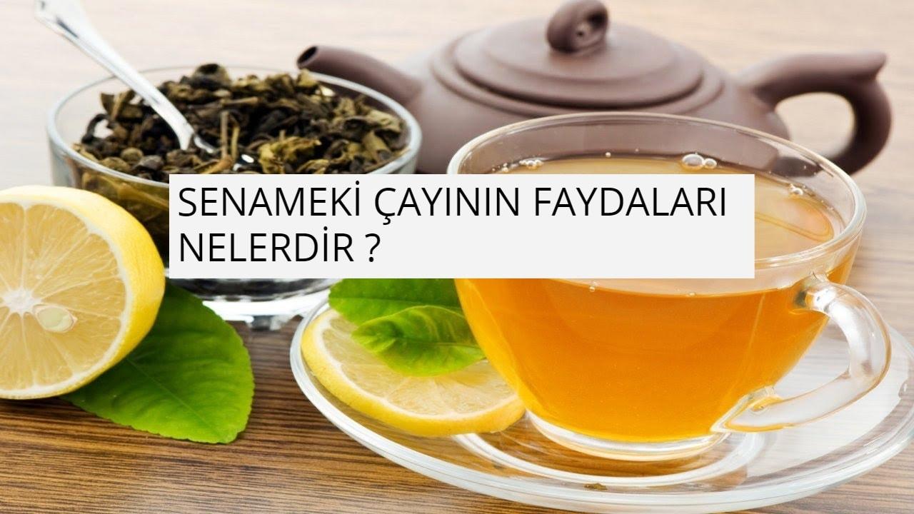 Sinameki Çayının Faydaları Zararları Yan Etkileri